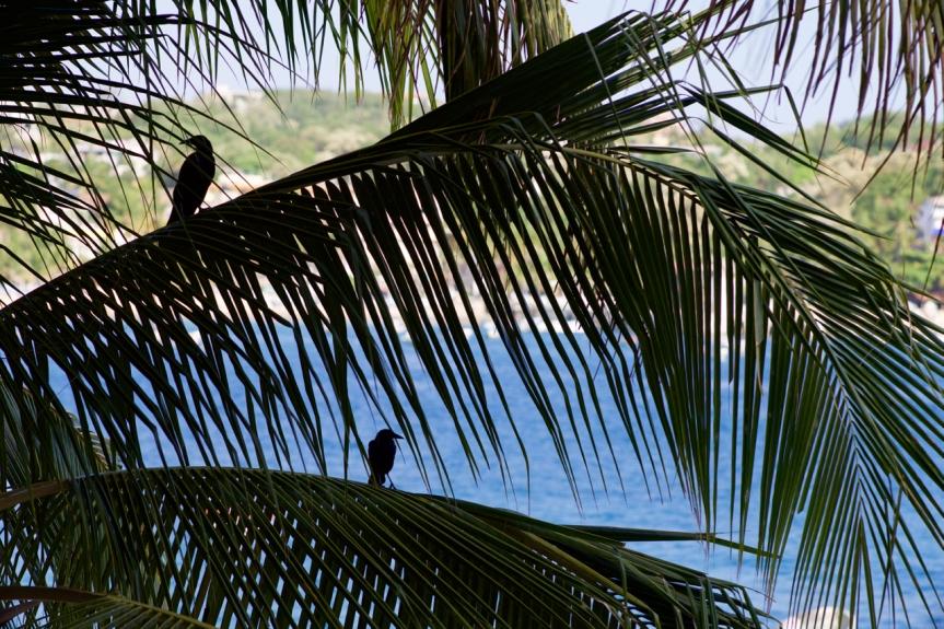 My balcony amigos....